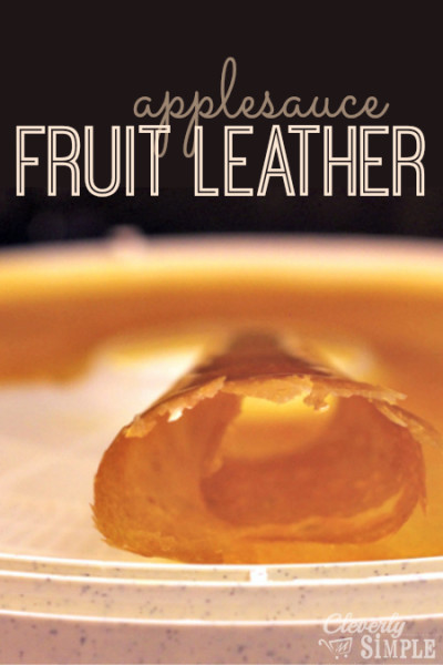 FOT Fruit Leather