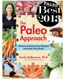 Paleo Approach Small